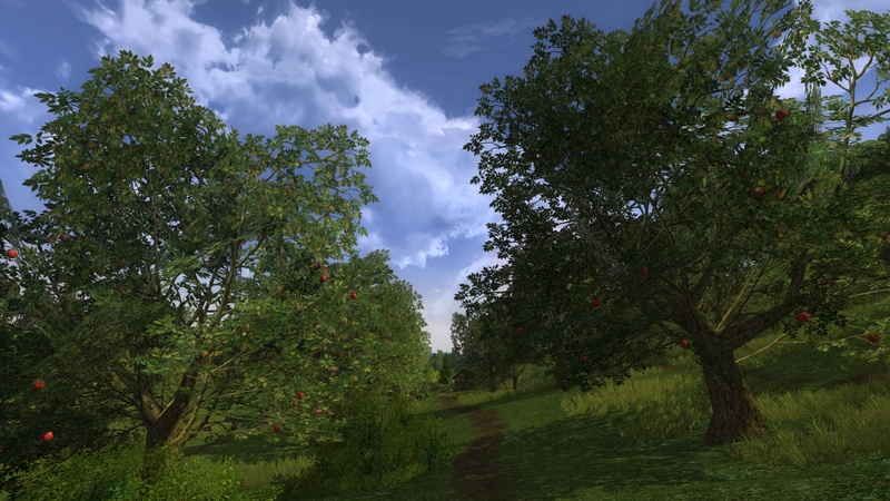 Passage along some appletrees in Greenhill Country - The Shire